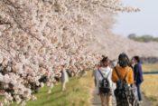 【2021年3月の運気予報】春の風、春の唄。